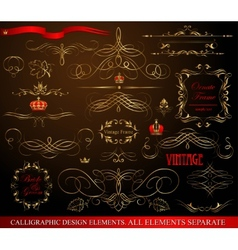 Calligraphic design elements gold on black vector