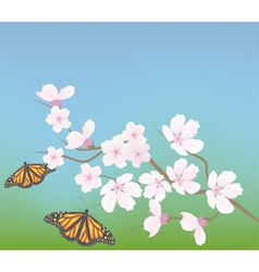 cherry branch and butterflies vector image vector image