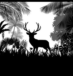Forest background with wild deer of trees vector