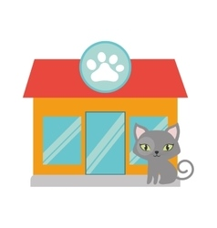 gray small cat green eyes pet shop facade paw vector image vector image