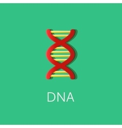 DNA or Biotechnology icon Flat colored style vector image vector image