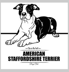 American staffordshire terrier dog vector
