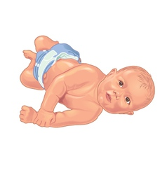 Baby rolling on floor vector