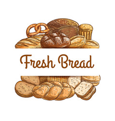 bakery shop bread and pastry sketch banner vector image