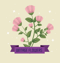 flowers plants with leaves and petals design vector image