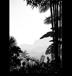 forest landscape of tropical background vector image