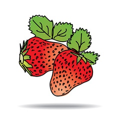 Freehand drawing strawberry icon vector
