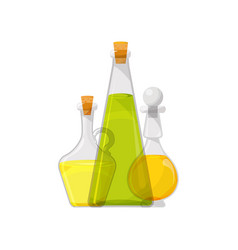Glass bottles of vegetable oil organic healthy vector