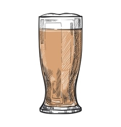 Glass of beer freehand pencil drawing vector