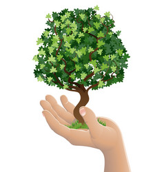 Hand holding a growing tree vector