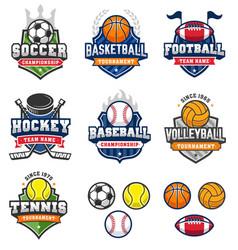 mixed vintage sport logos vector image