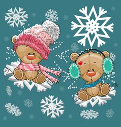 Two teddy bears vector