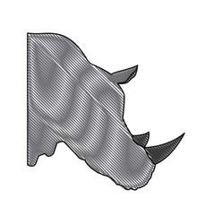 Head rhino wild animal africa exotic mammal vector