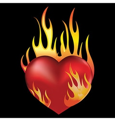 Heart black vector image