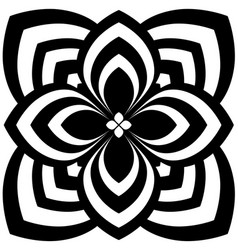black and white floral pattern on white background vector image