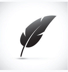 black feather vector image