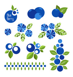 blueberry icons collection decorations vector image
