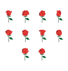 Flat color rose icon set vector