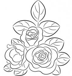 rose contour vector image
