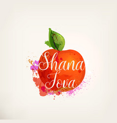 rosh hashanah greeting card vector image