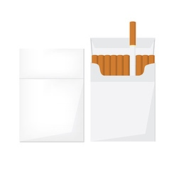 Opened and closed cigarette pack vector image vector image