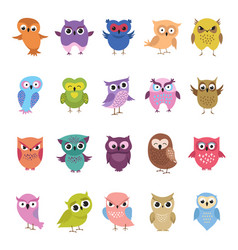 Cartoon cute owls set funny and angry birds vector