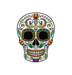 mexican sugar skull with floral pattern dia de vector image