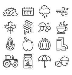 collection autumn icons isolated set vector image