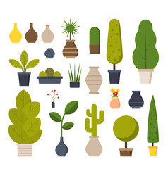 home and office plants set vector image vector image