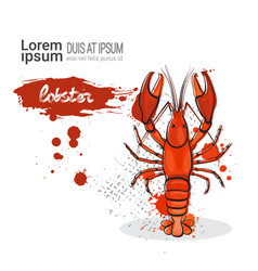 lobster hand drawn watercolor sea food on white vector image