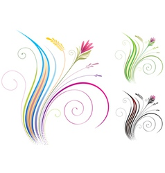Ornamental Floral vector image