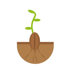 Plant grow flourishes natural vector