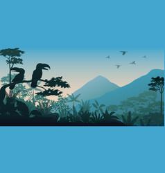 silhouette of bird in evening vector image