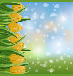 Spring banner with yellow blooming tulip vector