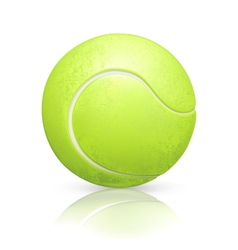 Tennis-ball vector image vector image