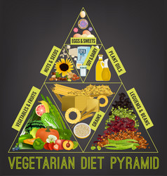 vegetarian food pyramid vector image