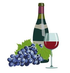 wine bottlewine glass and grapes vector image