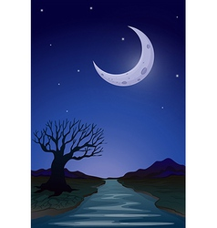 A moonlight view vector image