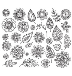 Big collection hand drawn ornate fancy flowers vector
