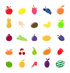 flat colorful fruit silhouettes vector image