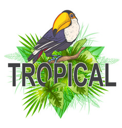 Green palm leaves and toucan vector