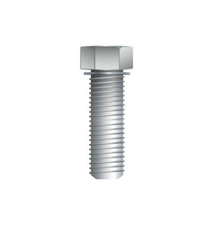 Hex bolt isolated on white background vector