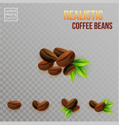image of realistic coffee beans compositions on a vector image