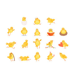 Set of funny yellow chicken in various situations vector