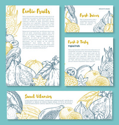 sketch posters of tropical exotic fruits vector image