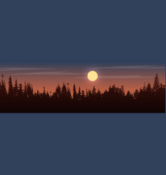 panorama of view to trees on sunset vector image