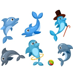 dolphin set vector image vector image