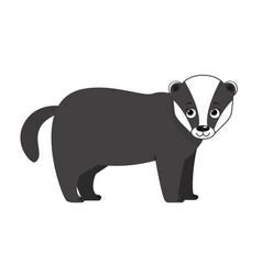badger forest animal vector image vector image