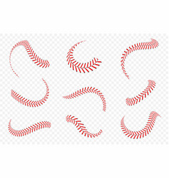 baseball ball laces or seams set baseball vector image