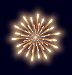 firework on the dark blue background vector image